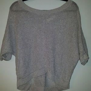 Silver LOFT sweater